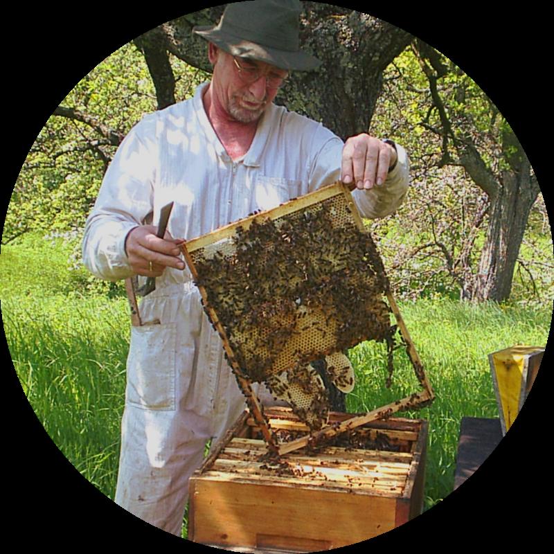 Bienenkorb wesensgemäße Imkerei
